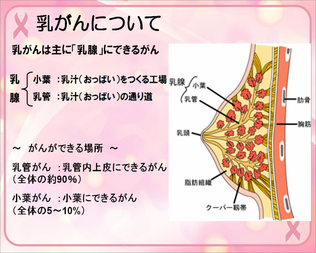 乳がん 命の母 副作用